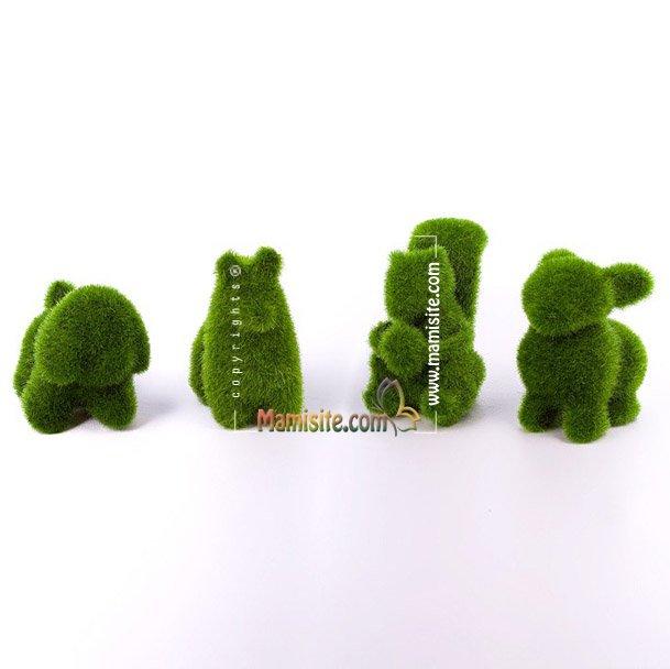 image 6C4E 4D6BB905 آموزش روش های سبز کردن سبزه عید با انواع بذرها+ عکس مدل سبزه